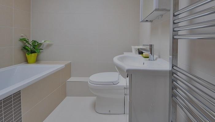 Astounding Toilet Waterproofing Dryproof Waterproofing Pdpeps Interior Chair Design Pdpepsorg