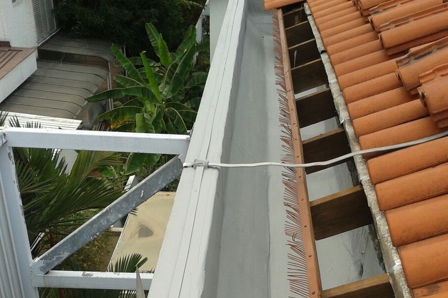 roof-gutter-maintenance