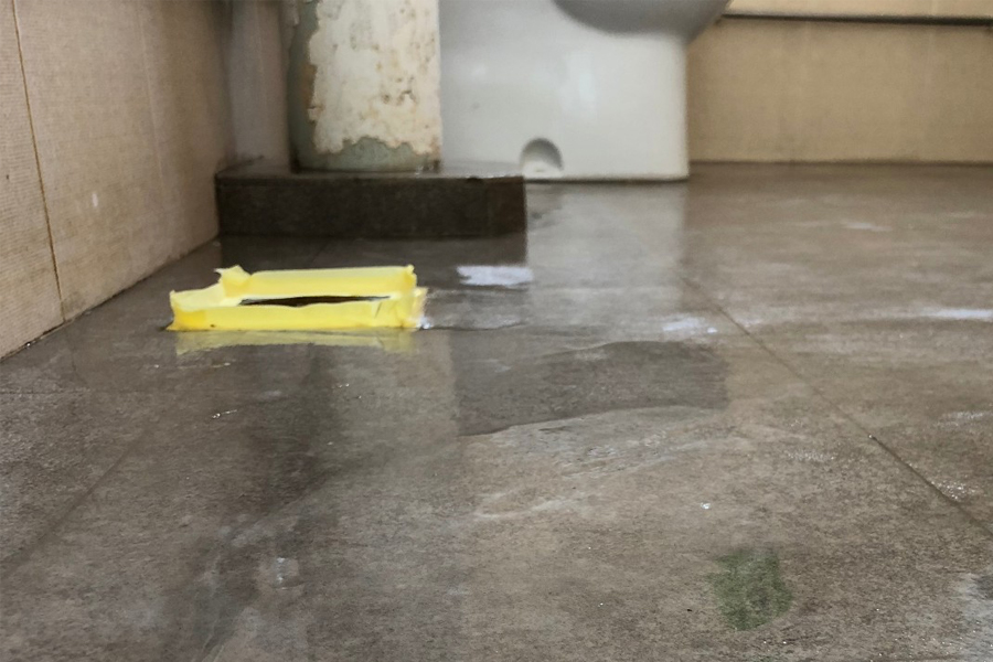 toilet-infusion-method